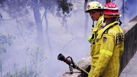 Hazard reduction burns at Cattai National Park this week - The Daily Telegraph | NPWS fire management | Scoop.it