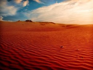 World can beat desertification: UN chief | Earth Citizens Perspective | Scoop.it