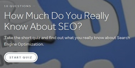 How Much Do You Really Know About SEO? | Surviving Social Chaos | Scoop.it