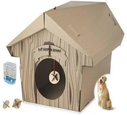 Pet Shop in Rohini   Pet care   Scoop.it
