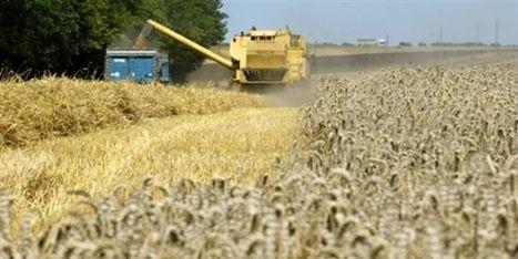 Pour les agriculteurs, ressemer sa propre récolte sera interdit ou taxé | Options Futurs Rio+20 | Scoop.it