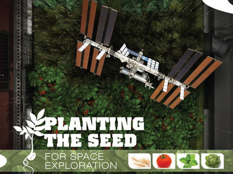 Serious Games Planting The Seed For Space Exploration | SERIOUS GAMES MARKET | Serious games, Réalité augmentée & Education | Scoop.it