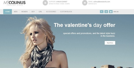 Best Magento Themes 2014 | WordPress Theme | Scoop.it