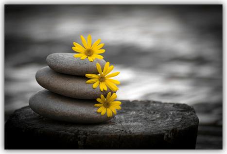 BalancingAct | Jenny's Mashup of Anything Library | Scoop.it