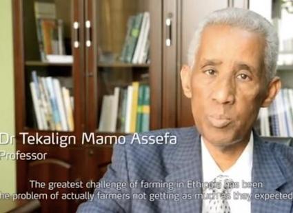 Prix Yara 2014 : l'éthiopien Tekalign Mamo Assefa couronné - Ecofin   agrophil   Scoop.it