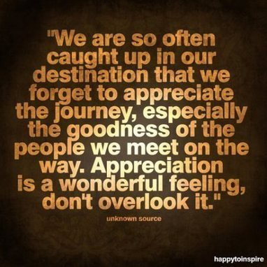 The Power of Appreciation | catnipoflife | Scoop.it