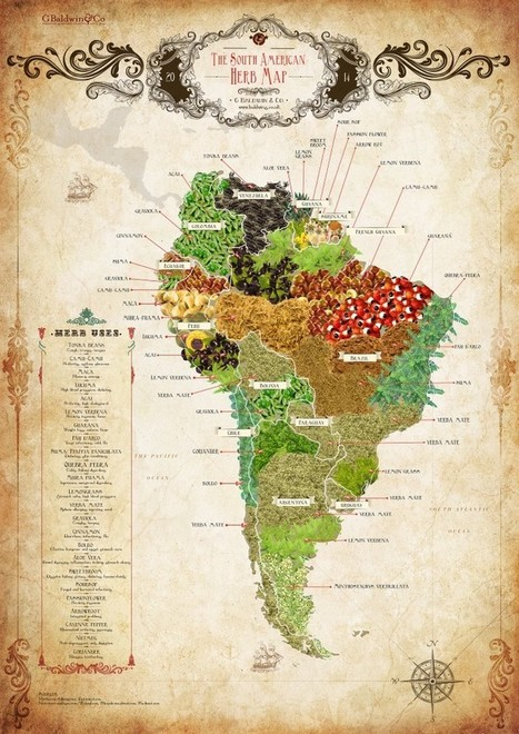 The South American Herb Map - Select Latin America | Banco de Aulas | Scoop.it