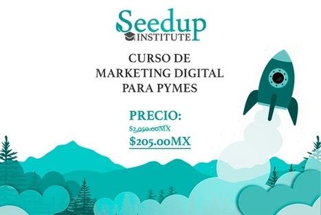 Seedup | Local growth hacking | Scoop.it