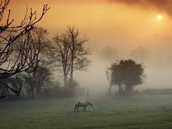 Wales, United Kingdom Photos - National Geographic | We are favorite travel around the world. | Scoop.it