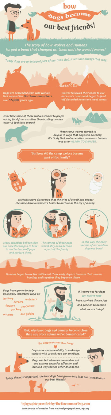How Dogs Became Our Best Friends | Random Life | Scoop.it