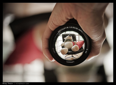 Depth of field and the importance of achieving critical focus | Travelling Light | Scoop.it
