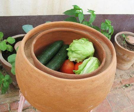 Energy-free Food Preservator | Ecoideaz.com | Scoop.it