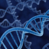 "Un mp3 memorizzato nel dna | L'impresa ""mobile"" 