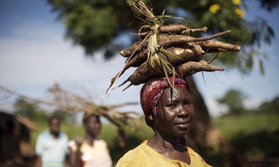 Land rights, not land grabs, can help Africa feed itself - The Guardian | Change | Scoop.it