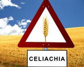 Asp Catanzaro: corsi di formazione per la tutela del soggetto celiaco ...   senza glutine   Scoop.it