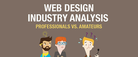 Web Design Industry Analysis Professionals vs. Amateurs [Infographic] | Social media and Seo | Scoop.it