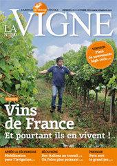 Entreprises / gens du vin : Benoît Sébastien prend la direction du château de Montaigne   Oenotourisme et idées rafraichissantes   Scoop.it
