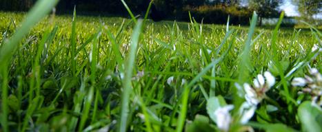 Compensation carbone et biogaz, qu'est ce que le gaz vert? | Univers Nature – Actualité, environnement, habitat et santé | Méthanisation Agricole, Collective, Territoriale | Scoop.it