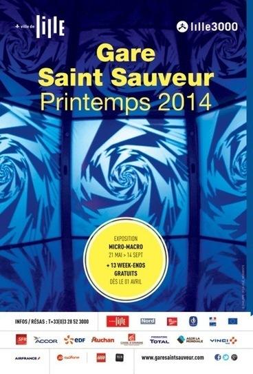 Le Printemps 2014 à la Gare Saint Sauveur de Lille du 01 avril au 29 juin 2014 | CDI RAISMES - MA | Scoop.it