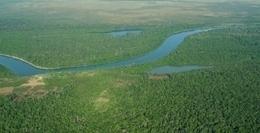 'La Economía de los Ecosistemas y la Biodiversidad Relativa al Agua y los Humedales' | aprendenaturales | Scoop.it