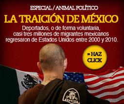 Cómo leer el desempeño del Congreso mexicano (réplica de ... - Animal Político Versión Móvil | Reportes | Scoop.it
