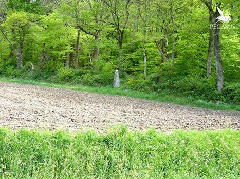 La guerre des Gaules: Menhir de la Roche à Uzel | La Guerre des Gaules en BD | Scoop.it