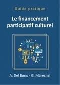 Le financement participatif culturel - Anaïs Del Bono et Guillaume Maréchal   politiquesculturelles-cirquecontemporain-artsdansl'espacepublic-bandedessinee-etc.   Scoop.it