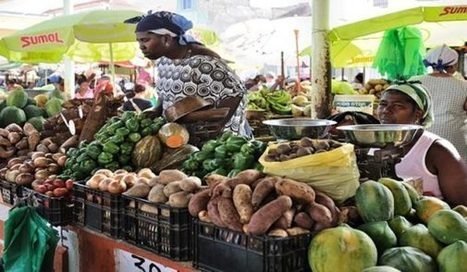 Rwanda agriculture sector registers growth despite challenges@nvestorseurope#Mauritius | Investors Europe Mauritius | Scoop.it