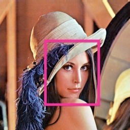Face Detection Tutorial | Adobe AIR Native Extensions | Scoop.it