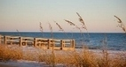 Alabama Beach Events: Gulf Shores-Orange Beach Festivals, Festivals, Concerts, Music, Arts . . . | Southern Recipes | Scoop.it