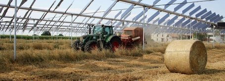 The Agrovoltaic system | efficient gardening | Scoop.it