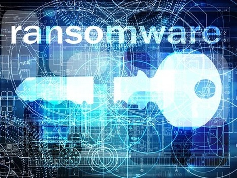 Ransomware Getting More Targeted, Expensive — Krebs on Security | Digital Transformation of Businesses | Scoop.it
