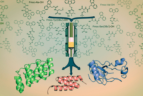 MIT's fast synthesis system could boost peptide-drug development | Amazing Science | Scoop.it