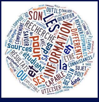 Compétences - Utiliser les référentiels ADBU et C2i - BU Paris descartes at BU Paris Descartes | Web 2.0 : quels impacts sur la formation aux cultures de l'information ? | Scoop.it