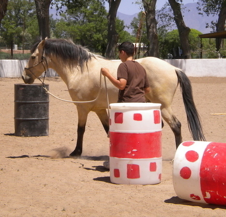 Youth, Addiction, Horses and Healing In-Balance Ranch Academy-AZ, in Huffington Post   Woodbury Reports Review of News and Opinion Relating To Struggling Teens   Scoop.it