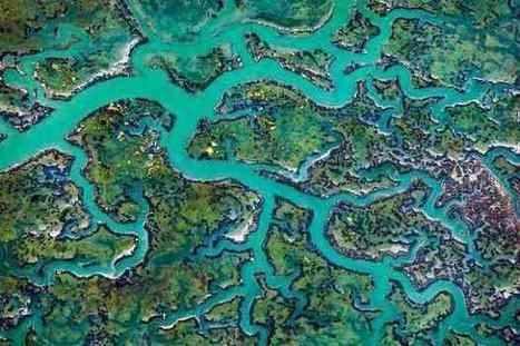 #Landscape #patterns - #Photos by Thorsten Scheuermann. #art #photography #nature | Luby Art | Scoop.it