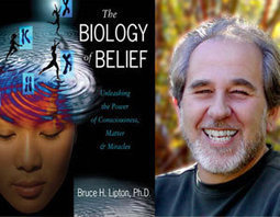 Bruce Lipton on the Cost of Thinking - About Meditation | Meditation: The Science and Research | Scoop.it