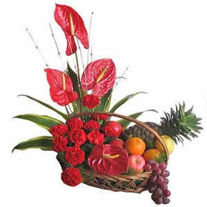 Send Flowers to Delhi. Florist in Delhi (florist in delhi.pdf) - DivShare | Online flowers, gifts, chocolates, and cakes delivery by flowreshop18.in | Scoop.it