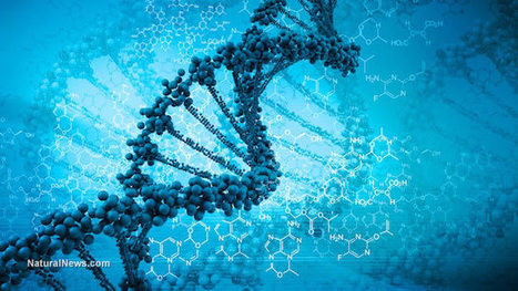 GMO scientists now developing techniques to intentionally pollute natural organisms' genomes to permanently alter DNA | Liberty Revolution | Scoop.it