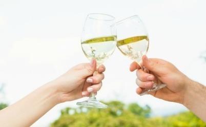 New Zealand: #Wine sensor technology to make Sauvignon blanc better than ever | Vitabella Wine Daily Gossip | Scoop.it
