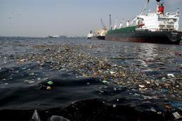 Kontinent aus Plastik treibt im Pazifischen Ozean - tt.com - Wo's Click macht | Plastikinsel | Scoop.it