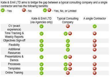 Katie and Emil Microsoft BI Specialists   Microsoft SQL Server Analysis Services   Scoop.it