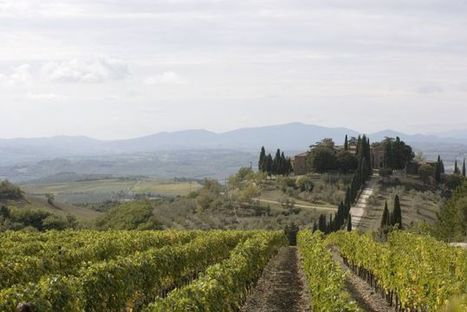 In Italy, an Art Contest to Rebrand a #Wine Dynasty's Family Name | Vitabella Wine Daily Gossip | Scoop.it