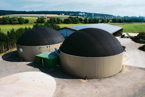 Energie renouvelable : les entreprises du Bioga...   developpement durable   Scoop.it