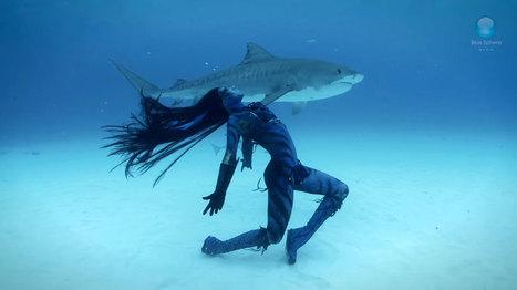 Cette danseuse murmure à l'oreille des requins dans un ballet aquatique absolument ahurissant | Carnets de plongée | Scoop.it