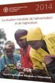 Rapport FAO : Ouvrir l'agriculture familiale à l'innovation   AGRONOMIE VEGETAL   Scoop.it