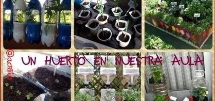 Nuestro proyecto educativo para el nuevo ciclo. El huerto escolar - Imagenes Educativas | Recull diari | Scoop.it