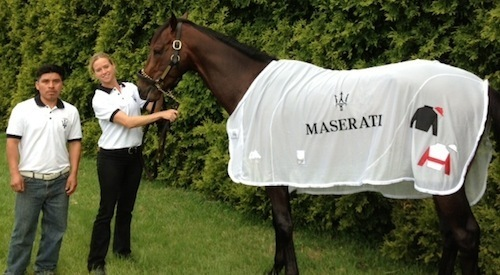 Sponsorship Coup: Kentucky Derby Winner Orb Races Under the Maserati Sports Car Banner For Grayson-Jockey Club Research/Safety Charities