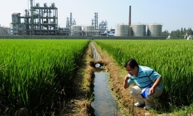 The human cost of China's untold soil pollution problem | jardines historicos, restauracion, normativa | Scoop.it