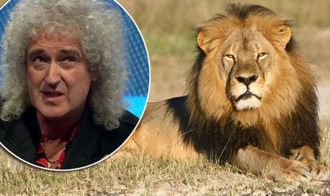 We need CECIL'S LAW: Brian May demands law to stop hunters importing trophies back to UK | Nature Animals humankind | Scoop.it
